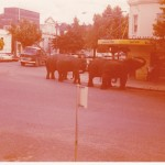 The Circus Hits Tumut in 1977