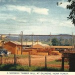 National Sawmills Tumut in the 1950s