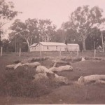 Pumping Shed 1939
