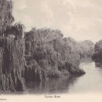 Old Postcard: Tumut River