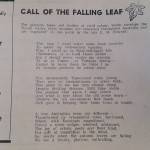 Call Of The Falling Leaf Poem